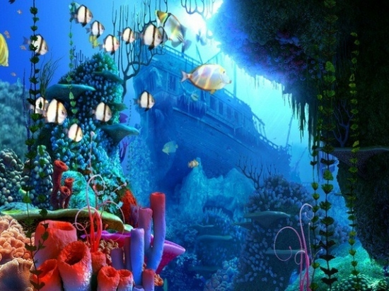 Coral Reef 3D Screensaver 1.1 build 4
