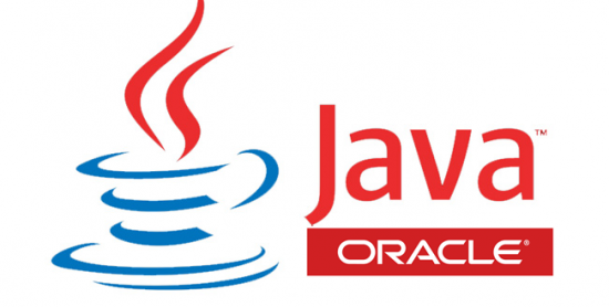 Sun Java SE Runtime Environment 10